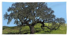 Reaching Beach Towel