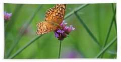 Variegated Fritillary Butterfly In Field Beach Sheet