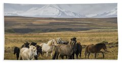 Wild Icelandic Horses Beach Sheet
