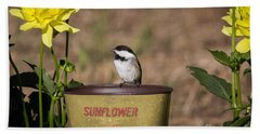 Black-capped Chickadee Poecile Beach Towel