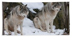 Timber Wolves Beach Towel
