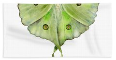 100 Luna Moth Beach Towel