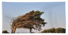 Beach Sheet featuring the photograph 120920p153 by Arterra Picture Library