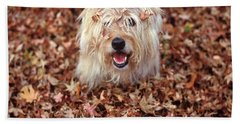 1990s Dog Covered In Leaves Beach Towel