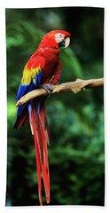 1990s Macaw Parrot Jungle Miami, Florida Beach Towel