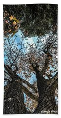1st Tree Beach Towel by Gandz Photography