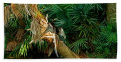 Anhinga Anhinga Anhinga On A Tree Beach Towel by Panoramic Images