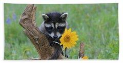 Baby Raccoon Beach Towel by M. Watson