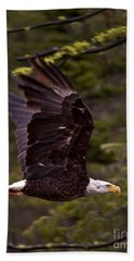 Beach Towel featuring the photograph Bald Eagle In Flight by J L Woody Wooden