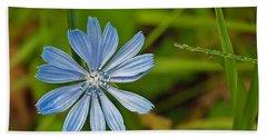 Blue Chicory Flower  Beach Towel