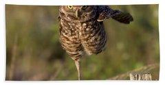 Burrowing Owl Photograph Beach Sheet