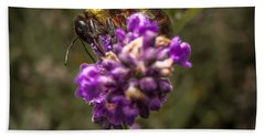 Carpenter Bee On A Lavender Spike Beach Towel