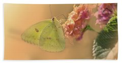 Clouded Sulphur Butterfly Beach Sheet