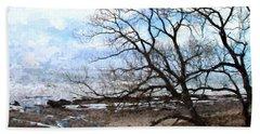 Beach Towel featuring the photograph Erie Shore In Winter by John Freidenberg