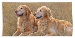 Golden Retrievers In Golden Field Beach Sheet