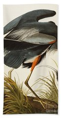 Great Blue Heron Beach Towel by John James Audubon