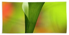 Beach Towel featuring the photograph Green Calla Lily by Heiko Koehrer-Wagner