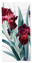 Dark Red Tall Bearded Iris Donatello Beach Sheet