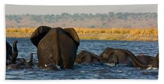 Beach Sheet featuring the photograph Kalahari Elephants Crossing Chobe River by Amanda Stadther