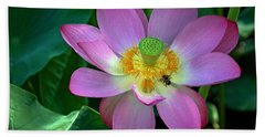 Beach Towel featuring the photograph Lotus Flower by Jerry Gammon