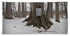 Maple Sugaring Beach Towel