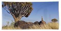 Meerkat In Quiver Tree Grassland Beach Towel by Vincent Grafhorst