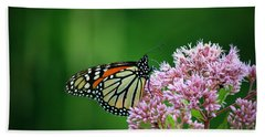 Monarch In Light  Beach Towel by Neal Eslinger