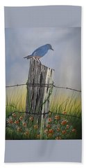 Mountain Bluebird Beach Sheet