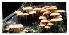 Beach Towel featuring the photograph Mushrooms On A Stump by Chalet Roome-Rigdon