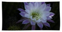 Night Blooming Cactus  Beach Sheet