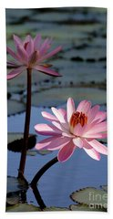 Pink Water Lily In The Spotlight Beach Sheet