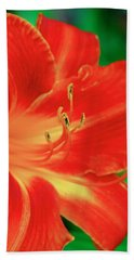Red, Orange And Yellow Lily Beach Towel