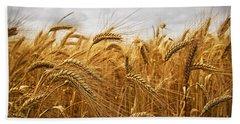 Wheat Beach Sheet