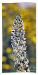 Beach Towel featuring the photograph Wild Mignonette Flower by George Atsametakis