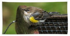 Beach Towel featuring the photograph Yellow-rumped-warbler by Robert L Jackson