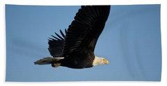 Adult Bald Eagle In Flight, Kachemak Beach Towel