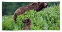 Alaska2010.-brown Beers On The Kenai Beach Towel