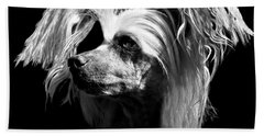 Chinese Crested Hairless Beach Towel