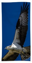 Beach Towel featuring the photograph Osprey In Flight by Dale Powell