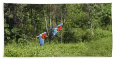 Red And Green Macaws Beach Towel
