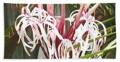 Queen Emma Crinum Lilies Beach Sheet