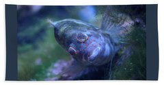 Beach Towel featuring the photograph Redspotted Hawkfish  by Savannah Gibbs