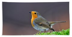 Robin Beach Towel