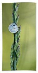 Snail On Grass Beach Towel