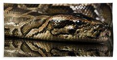 Beach Sheet featuring the photograph Snake by Gunnar Orn Arnason