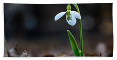 Snowdrop Flower Beach Sheet