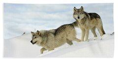 Wolves In Winter Beach Towel
