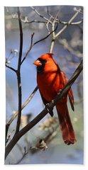 3477-006- Northern Cardinal Beach Towel