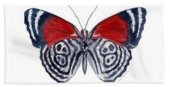 37 Diathria Clymena Butterfly Beach Towel