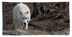 Beach Towel featuring the photograph Arctic Wolf by Wolves Only